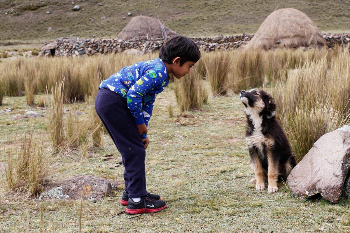Friendship, Boy and Dog, Huascaran National Park
